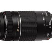 Objektiv Canon EF 75-300